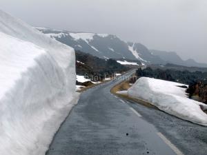 Hamningsbergin tie